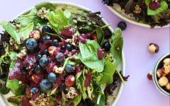 picture of blueberry quinoa hazelnut salad
